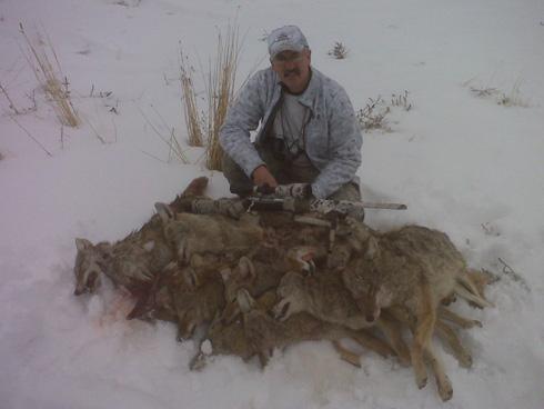 coyote hunting okanogan wa